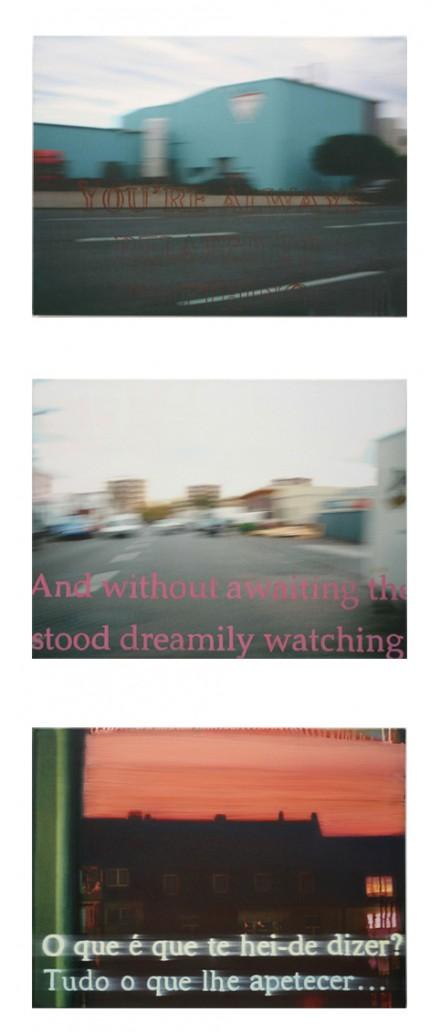 alw.dream.dizer